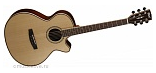 CORT AS-S5 NAT W CASE