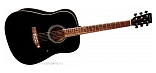 TENSON D10 DREADNOUGHT BLACK