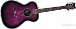 DAISY ROCK PIXIE A/E PLUM PURPLE BURST