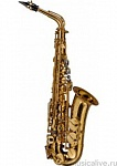 SELMER ALTO-REFERENCE-DGG DRAGON BIRD